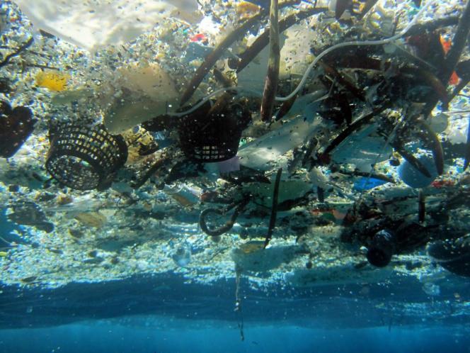 Les fragments de plastique sont très largement répandus dans les océans, menaçant tout la chaîne alimentaire marine.