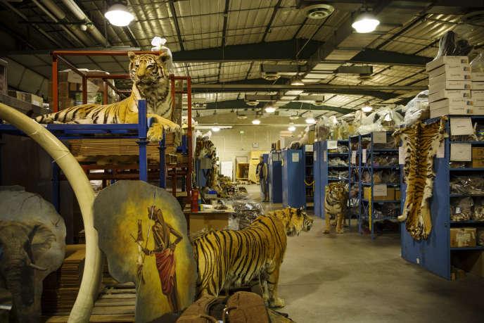 Dans un  hangar du