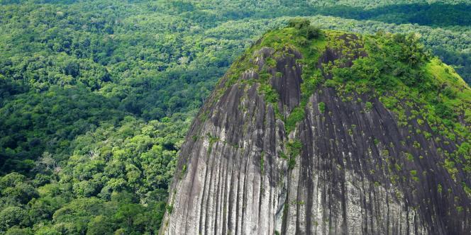 Le massif du Mitaraka, en Guyane.