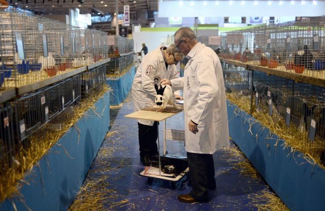 Le Salon de l'agriculture ouvre ses portes, à Paris, du samedi 21février jusqu'au 1er mars.