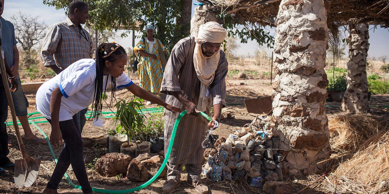 Entre la France et l'Afrique, l'agroécologie ne connaît pas de frontières