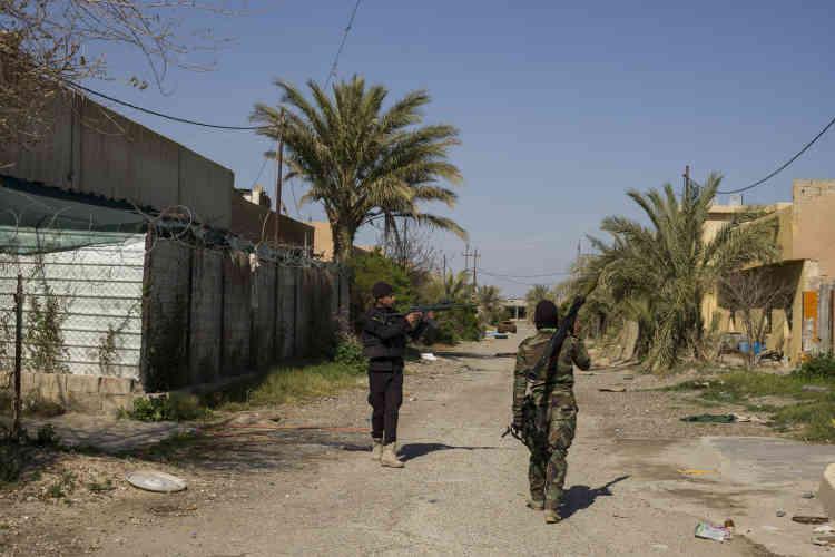 Après la débandade des forces de sécurité à Mossoul en juin, les milices chiites regroupées sous le sigle MP sont venues au secours de l'ancien premier ministre Nouri Al-Maliki pour stopper l'avancée de l'EI sur Bagdad. Ici le village d'Owainat,  à 5 kilomètres au sud de Tikrit, position-clé par sa localisation, et libéré depuis février par les forces de la Mobilisation populaire.