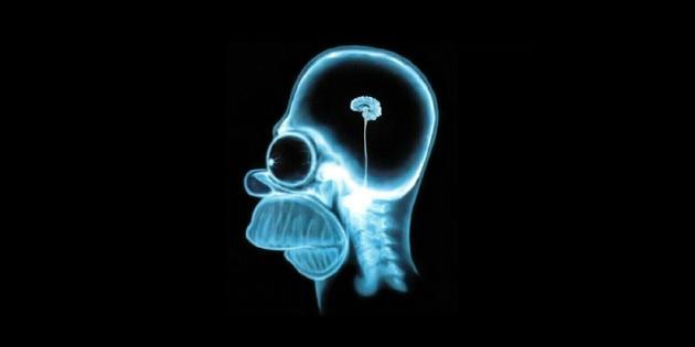 Homer Simpson est plus connu pour sa passion de la bière et de la télévision que pour son génie scientifique.