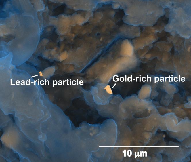 L'objectif des recherches est de se débarrasser de certains de ces métaux polluants qui limitent le recyclage de ces résidus en engrais et d'en extraire les métaux et éléments précieux. Le succès d'un tel processus réduirait l'exploitation minière et les quantités de ces métaux se retrouvant dans l'environnement.