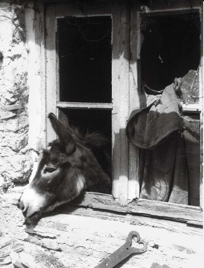Parmi les oeuvres de la collection Pinault présentées à l'exposition