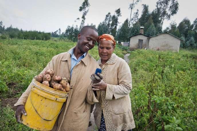 Les exploitants qui s'abonnent à M-Farm obtiennent quotidiennement des informations sur les prix de 45 cultures négociées sur les 5 plus grandes places des marchés kényanes.
