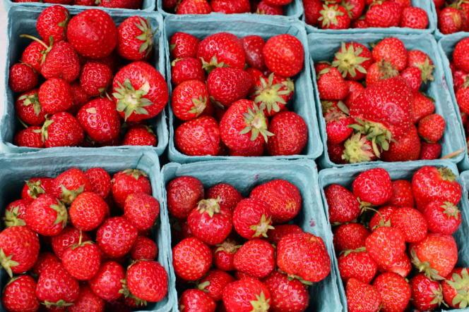 Les hommes qui consomment le plus de fruits et légumes chargés en pesticides (comme les fraises, les pommes ou les épinards) ont un sperme de qualité moindre, selon une étude publiée mardi 31 mars.