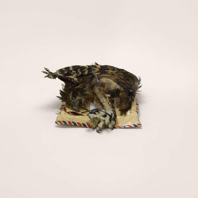 Cadavre d'oiseau, étiqueté « décor d'intérieur », Indonésie à Miami, Floride (interdit).