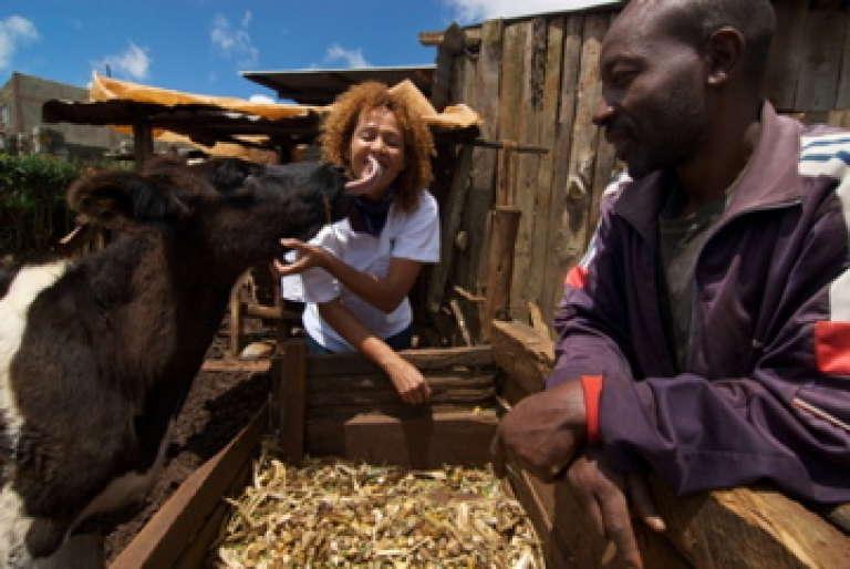 Icow, la société de la Kényane Su Kahumbu donne à plus de 160 000 fermiers abonnés des informations personnalisées pour cultiver ou élever au mieux