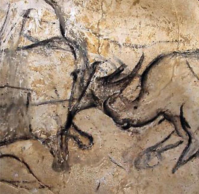 Détail d'une fresque copiée sur la grotte Chauvet : affrontement entre deux rhinocéros.