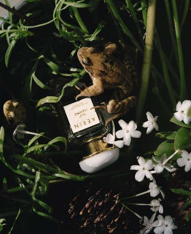 Ikat Jasmine, Aerin (en exclusivité chez Estée Lauder au  Printemps) : une dentelle de fleurs blanches tissée de jasmin sambac, de jasmin égyptien et de tubéreuse.