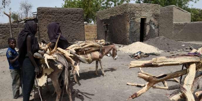 Le Niger doit en outre faire face à la présence de 200 000 réfugiés des pays voisins.