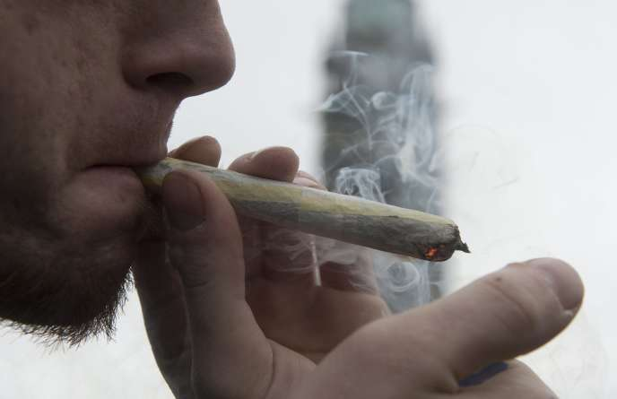 Un homme allume un joint de marijuana, lors d'une manifestation le 20 avril 2015 à Ottawa, au Canada.