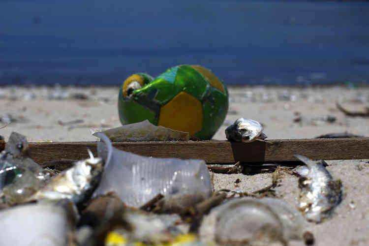 La baie de Guanabara, où auront lieu les épreuves de voile, est aussi touchée par la pollution. En février, comme sur cette photo, des milliers d'aloses sont aussi remontées sans vie à la surface. Cette immense baie qui abrite 130 îles est polluée par la décharge de Jardim Gramacho, une montagne d'ordures qui a fermé en 2012 mais dont le lisier a contaminé le sous-sol.