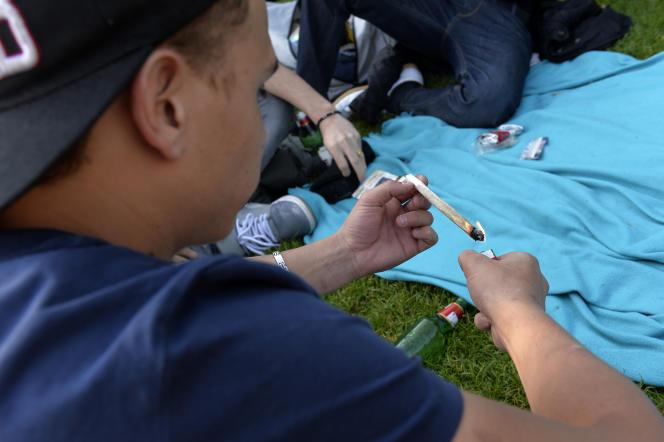 Selon l'étude, les régions Midi-Pyrénées et Languedoc présentent une surreprésentation de consommateurs de cannabis.