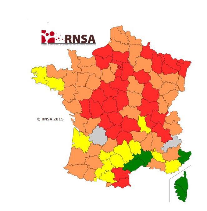 Capture d'écran du site de la RNSA : carte de vigilance des pollens du 17 au 24 avril.