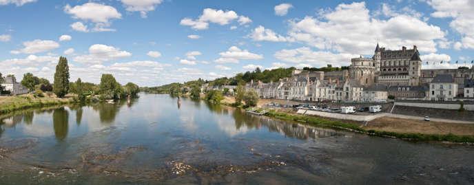 Un peu plus de 800 saumons ont remonté en 2013 la Loire avant de bifurquer vers son affluent, l'Allier.