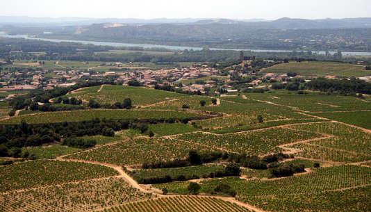 Les vignobles de Châteauneuf-du-Pape.