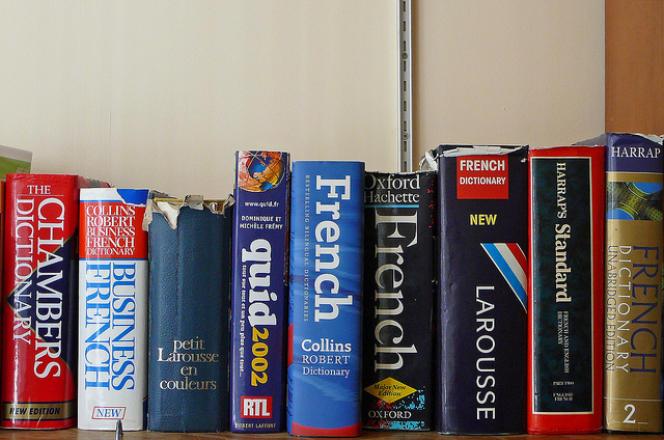 Des dictionnaires de français en langue anglaise.