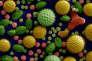 Différents pollens vus au microscope.