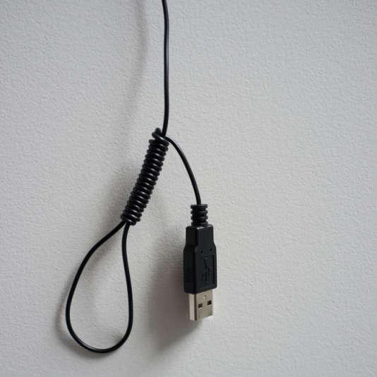Même Orwell n'avait pas poussé le vice assez loin pour imaginer que nous aurions tous un fil à l'iPad.
