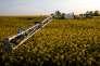 «La montée en gamme permettrait d'échapper au piège de la concurrence par la déflation des coûts à laquelle se livre la plupart des pays européens» (Photo: agriculture à Cambrai, en 2015).