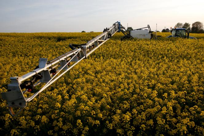 Un agriculteur épand des pesticides dans un champ de Colza, à Belcourt, en mai 2015