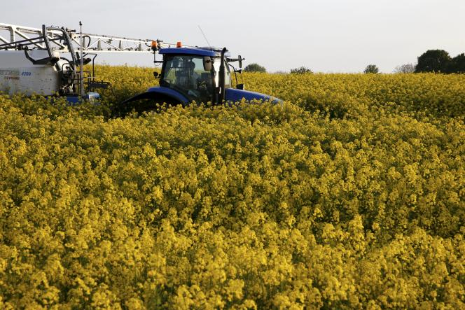 Un paysan épand des pesticides sur un champ de colza à Blecourt, près de Cambrai (Nord), le 10 mai.
