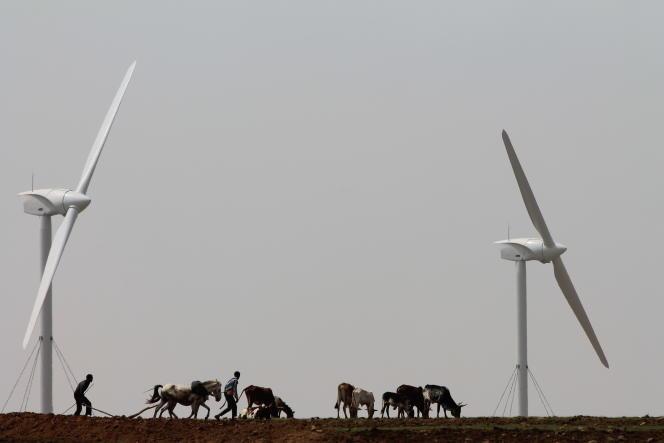 Ferme éolienne construite par l'entreprise Vergnet, à Ashegoda, dans le nord de l'Ethiopie.