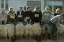 """Une scène du film islandais de Grimur Hakonarson, """"Béliers"""" (""""Hrutar"""" - """"Rams"""")."""