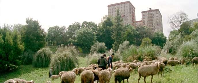 Une scène du film portugais de Miguel Gomes,