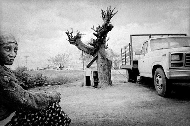 Une migrante venue du Texas, dans son jardin, à Teviston (2001).