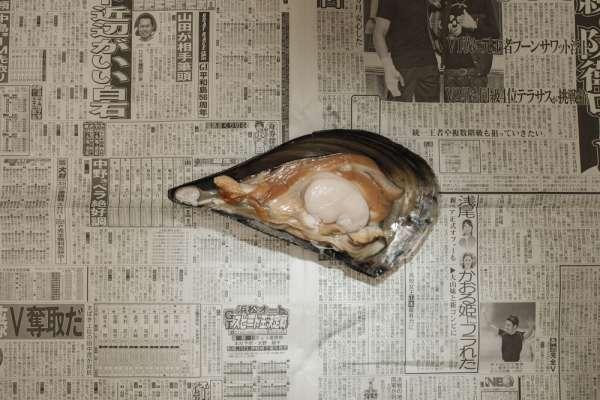 Coquillage, Tokyo (Japon), février 2011, 394 yens (3,51 euros).