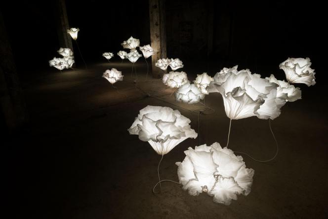 Coralys Installation sculpture papier de Junior Fritz Jacquet.
