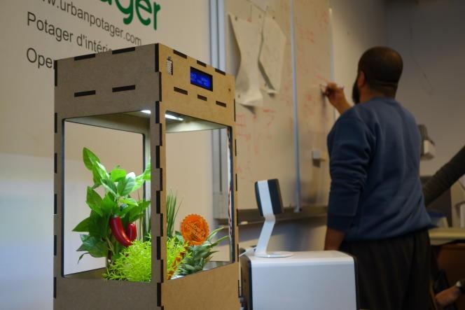 Le potager urbain du FacLab. L'appareil gère automatiquement la température, l'humidité et l'exposition à la lumière des plantes.