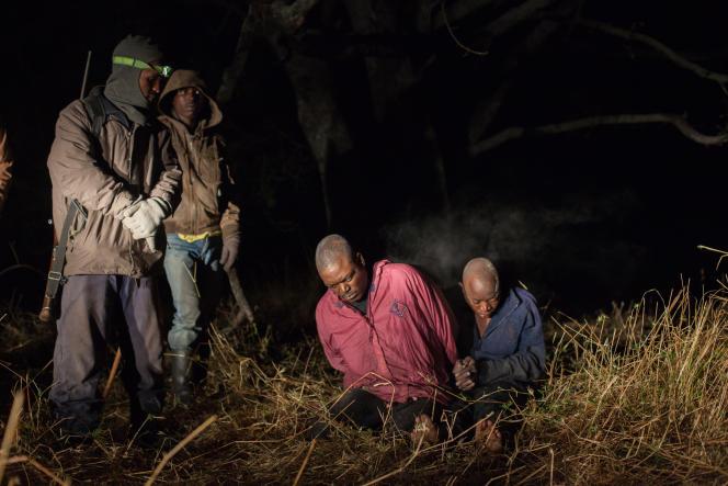 1 - Ces deux braconniers ont été arrêtés par des gardiens en pleine nuit alors qu'ils volaient du poisson dans le bassin d'un élevage à l'aide de filets maillants.