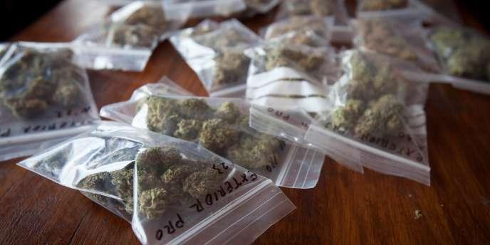 Des sachets de cannabis, la drogue la plus consommée en Europe.
