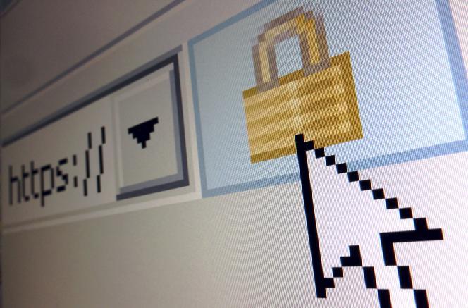 Les mastères spécialisés dans la cybersécurité ont la cote.