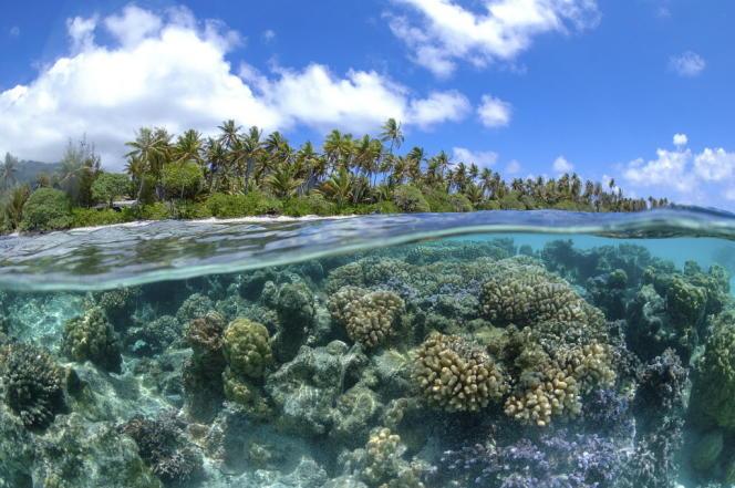 La chaleur emmagasinée génère une dilatation de l'océan, de façon non-homogène, qui provoque l'élévation du niveau de la mer.