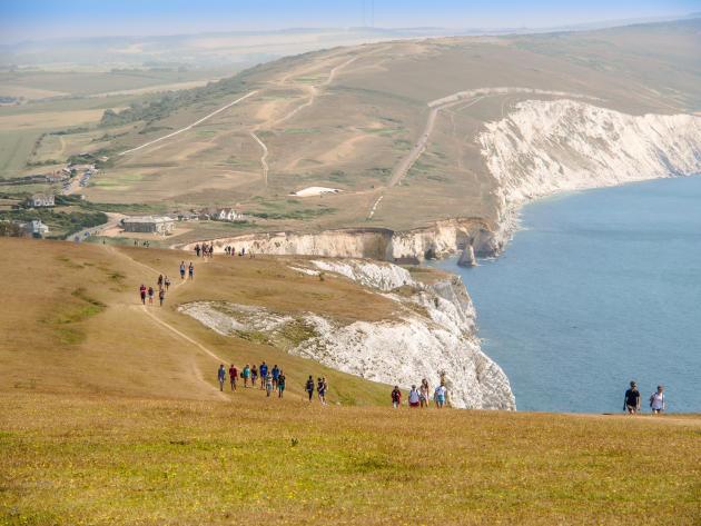 La côte de l'île de Wight est une mine de fossiles, qu'il est autorisé de ramasser.