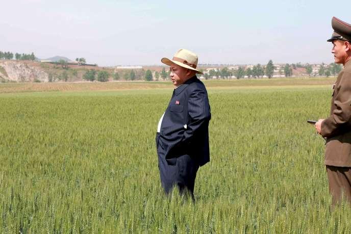 Le chef nord-coréen Kim Jong-un en viste dans la ferme 1116, photographie non datée publiée par l'agence officielle nord-coréenne KCNA le 1er juin 2015.