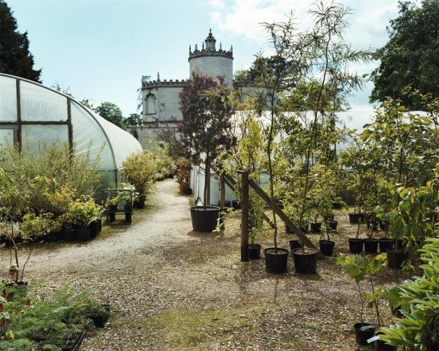La pépinière de Pan-Global Plants, près de Gloucester.