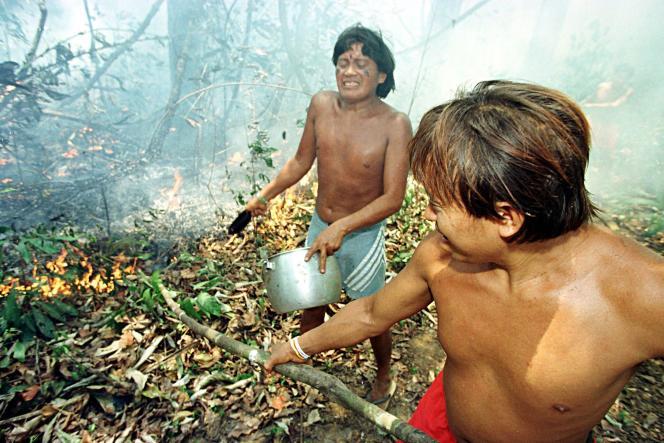 Indiens Yanomamis au Brésil, mars 2020.