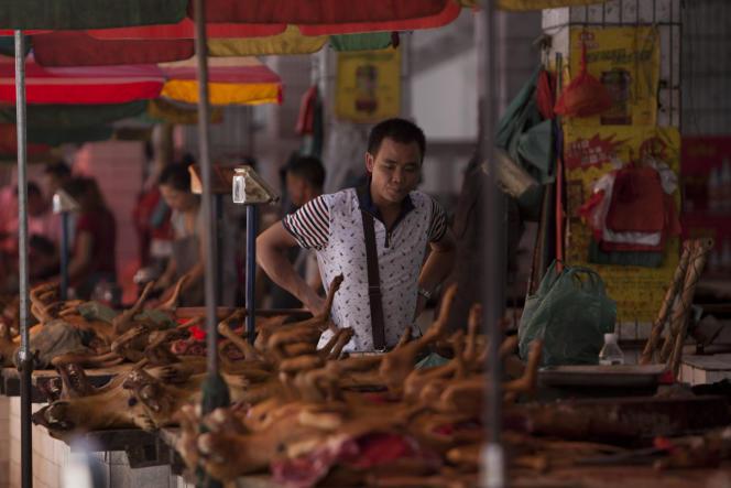 De la viande chien sur les étals du marché de Yulin, dans le sud de la Chine, le 17 juin.