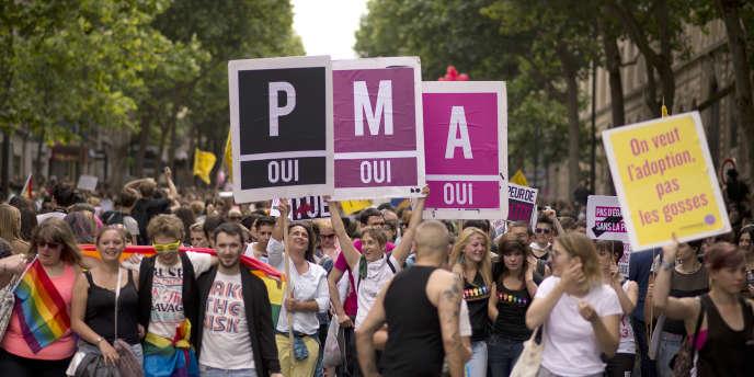 Manifestation de soutien à la PMA, lors de la Gay Pride, le 29 juin 2013, à Paris.