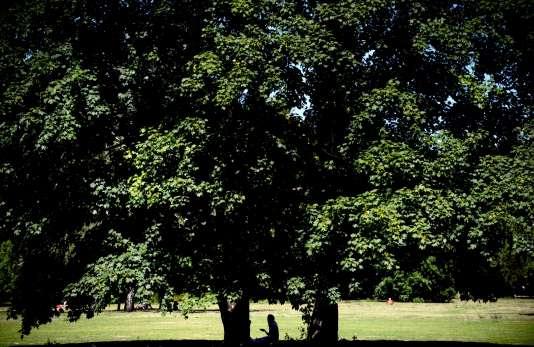 Le parc Tiergarten à Berlin.