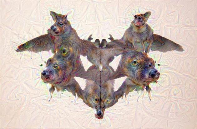 Le test de Rorscharch interprété par DeepDream.