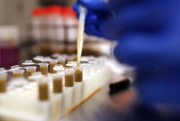Destinées à lutter contre la bactérie «Clostridium difficile», des gélules à base de matières fécales sont préparées dans ce laboratoire de l'université de Calgary (Alberta, Canada).