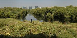 Le Bandra-kurla Complex, une zone d'affaires au nord du bidonville de Dharavi, est parcouru par une mangrove, à Bombay.