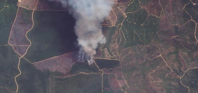 Image satellite d'un feu de défrichement illégal dans le parc national de Tesso Nilo, sur l'île de Sumatra, en Indonésie.